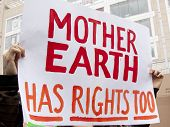 foto of modifier  - A close up of a sign that reads Mother Earth Has Rights Too is held by a protestor during a march against genetically modified organisms - JPG