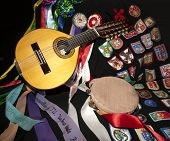 stock photo of minstrel  - musical instrument on a minstrel layer shields the different cities - JPG
