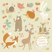 Vector set of cute wild animals in the forest: fox, bear, hedgehog, rabbit, snail, deer, owl, bird, mouse. Vintage set. poster