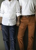 stock photo of doma  - Colorful gay male couple holding hands and standing side by side - JPG