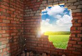 picture of green wall  - Broken bricks wall - JPG