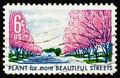 Beautiful Streets 1969