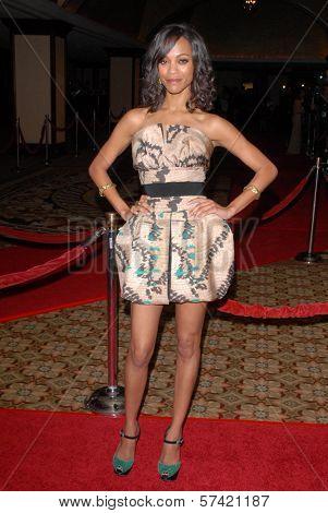Zoe Saldana at the 62nd Annual DGA Awards - Arrivals, Hyatt Regency Century Plaza Hotel, Century City, CA. 01-30-10