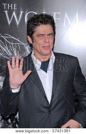 Benicio Del Toro  at