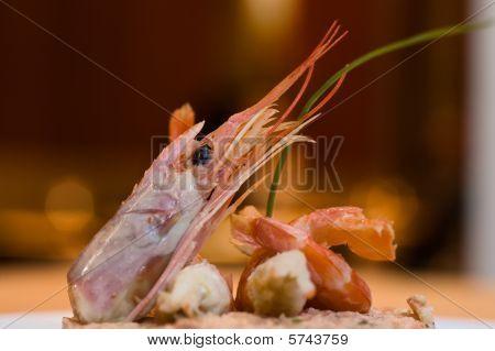 Gourmet Seafood.