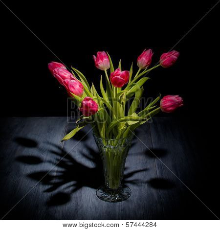 Tulips On A Blue Gray Wood Table With Black Background