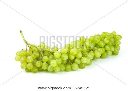 Bunch Of Green Seedless Grapes