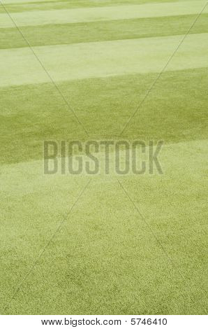 Astroturf  Bowling Green