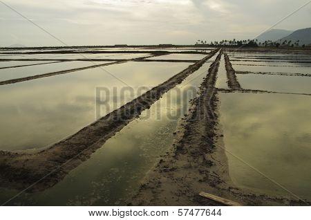 Large Salt Field In Cambodia