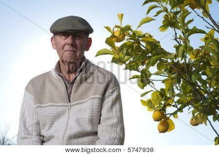 Sad Senior Man Next To Lemon Tree