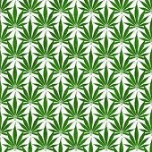 image of marijuana leaf  - Green Marijuana Leaf Pattern Repeat Background that is seamless and repeats - JPG