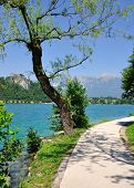 Lakeside Footpath, Lake Bled, Slovenia