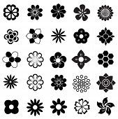 picture of pollen  - beautiful many flower vector set - JPG