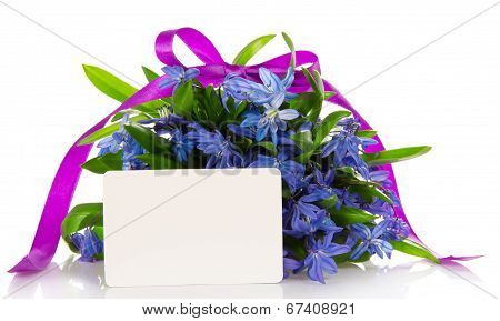 Gentle bouquet of blue squills and card