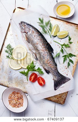 Fresh Raw Fish Trout With Herbs And Lemon On Wooden Background