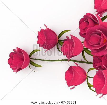 Love Roses Represents Passion Romance And Dating