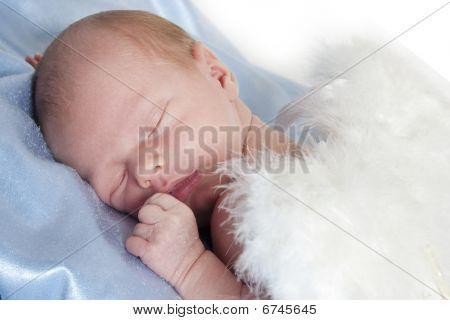 Angel recién nacido