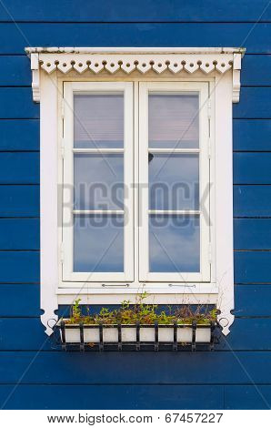 Window In White