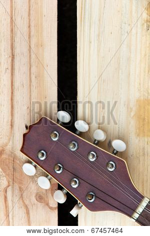 detail of mandolin headstock background concept