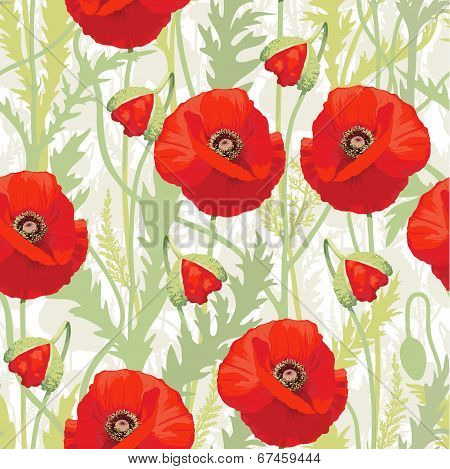 Red poppy - seamless pattern