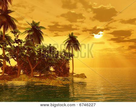 Beautiful Island In The Sunset