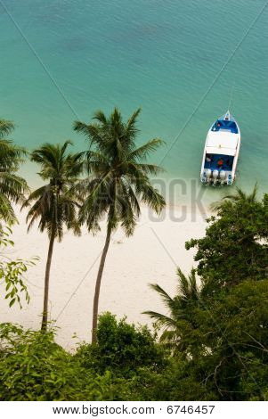Beach With Palms And Boat