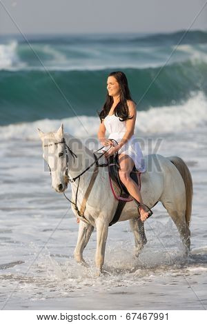gorgeous woman horse ride in the water on beach