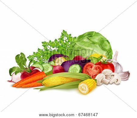 Fresh vegetables on white