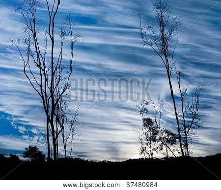 Meteorology Hooked Cirrus Spissatus And Uncinus Cloud Types