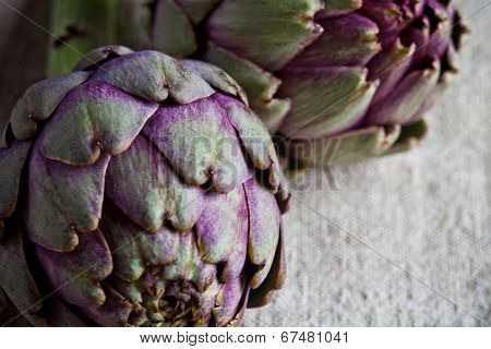two fresh artichokes closeup on textile background