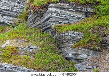 Geological Rock Layers