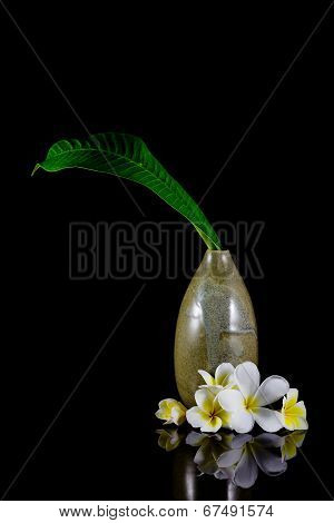 Frangipani Flower And Leaf In Vase Isolated On Black Background