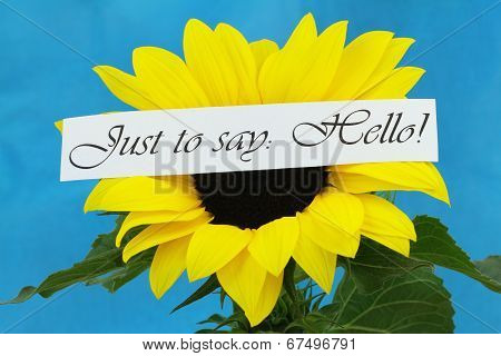 Just to say hello card with sunflower