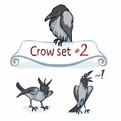 picture of hoods  - Hooded crow character design set number 2 - JPG