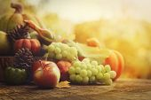 stock photo of wooden basket  - Autumn nature concept - JPG