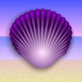 picture of beach shell art  - Vector abstract purple shell illustration on the summer sea beach - JPG