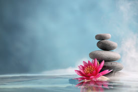 stock photo of stone-therapy  - Spa still life with water lily and zen stone in a serenity pool - JPG