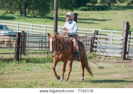 Cowboy Riding A Horse