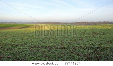 Field in a hilly landscape at sunrise in autumn