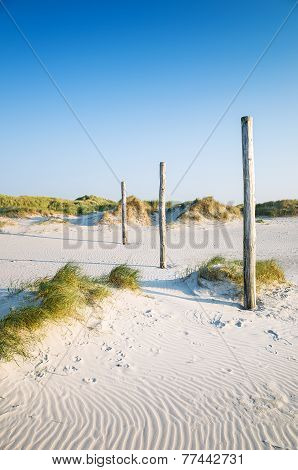 Coastal Dune Sankt Peter-ording