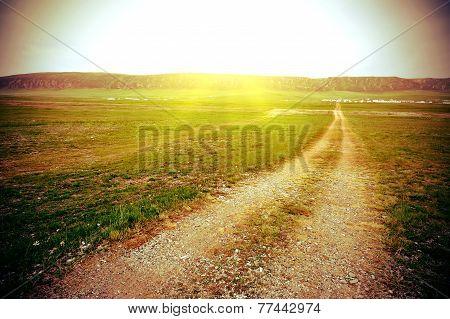 trail on grass