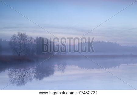 Misty Morning On Autumn Swamp