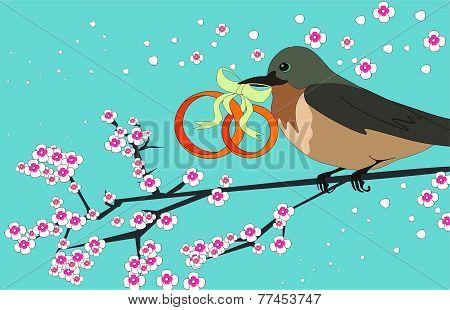 bird with wedding rings