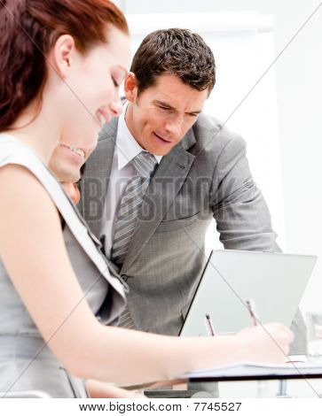 Portrait Of Business Partners Working