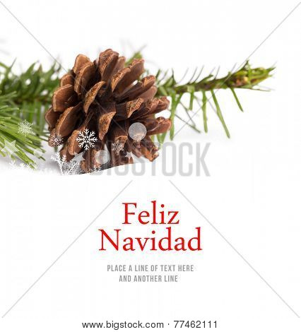 Feliz navidad against brown pine cone with fir branch