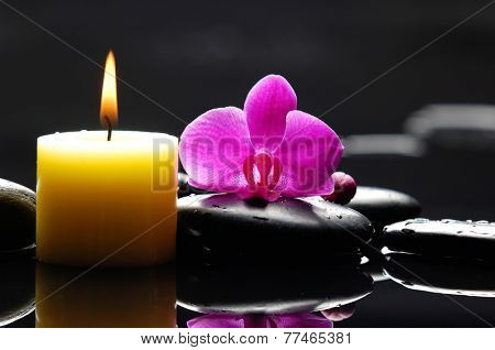 Macro of red orchid with yellow candle and therapy stones