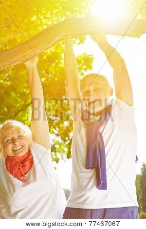 Two happy senior people doing pull-ups on a tree in summer