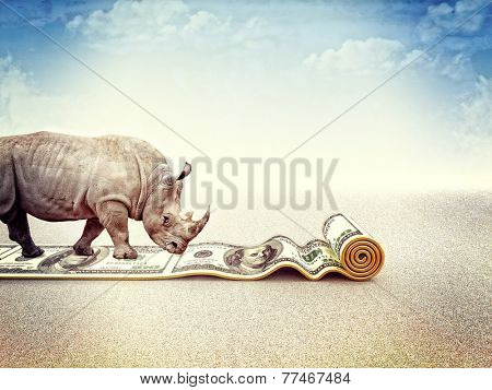 walking rhino and dollar carpet 3d