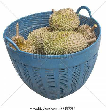 Durian In Basket