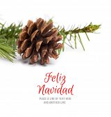 stock photo of fir  - Feliz navidad against brown pine cone with fir branch - JPG